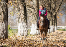 Young girl riding horses Royalty Free Stock Photography