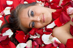 Young girl in rose peta Stock Photo