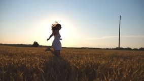Young girl is running along wheat field under blue sky at sunset. Woman is jogging at the meadow. Sun shine at. Background. Side view Slow motion stock footage