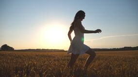Young girl is running along wheat field under blue sky at sunset. Woman is jogging at the meadow. Sun shine at. Background. Side view Slow motion stock video footage