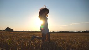 Young girl is running along wheat field under blue sky at sunset. Woman is jogging at the meadow. Sun shine at. Background. Side view Slow motion stock video