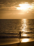 Young girl running on beach at sunset. A young girl is having fun running on a sandy beach at sunset on beautiful Hawaii, Maui stock photography
