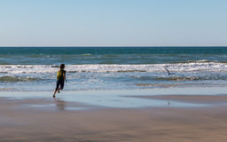 Young Girl Running After Seagull Royalty Free Stock Images