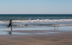 Young Girl Running After Seagull Stock Photography
