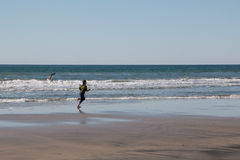 Young Girl Running After Seagull Royalty Free Stock Image