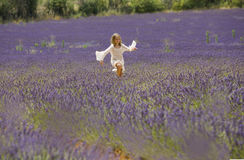 Young girl runs in field of lavender, Provence Royalty Free Stock Photography