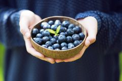 Young girl's hands holding a bowl with fresh ripe blueberries. stock photos