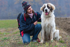 Young girl showing affection to her shepherd dog. Young girl showing affection to her Bucovina shepherd dog Royalty Free Stock Photos
