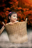 Young girl Sitting In Basket Stock Photos