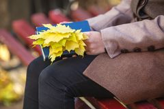 Young girl sitting on a bench in park on a fall day Royalty Free Stock Image