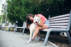 Young girl sitting on the bench and playing with her white husky dog Stock Image