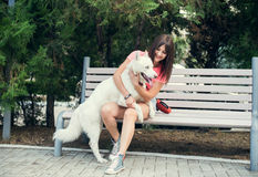 Young girl sitting on the bench and playing with her white husky dog Royalty Free Stock Photography