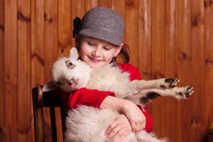 Young girl sitting on a chair, holding his little lamb and looks at him. Farm. stock photo