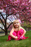 Young girl sitting by cherry blossom tree Stock Image