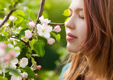 Young girl smelling blossoms Royalty Free Stock Images