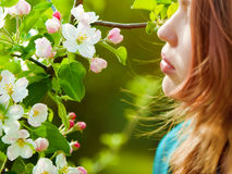 Young girl smelling blossoms Stock Photography