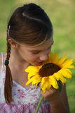 Young girl smelling a sunflower Royalty Free Stock Photos