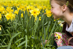 Young girl smelling yellow daffodils Stock Image
