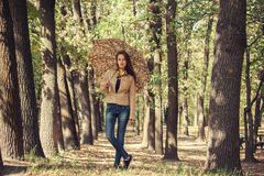 Young  girl smiling in autumn with umbrella Royalty Free Stock Photography