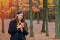 Young smiling girl holding orange leaves in hands autumn park in the forest. Young girl smiling holding orange leaves in hands in autumn park in the forest royalty free stock photography