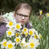 Young girl in spring park. Young girl with daffodils in spring park Royalty Free Stock Photo