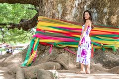 Young girl standing in front of a Giant Monkeypod Tree royalty free stock image