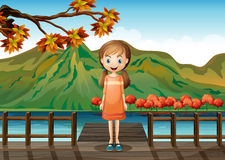 A young girl standing in the middle of the wooden bridge Royalty Free Stock Images