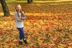 Young girl standing thoughtfully in autumn park with fallen yellow leaves stock image