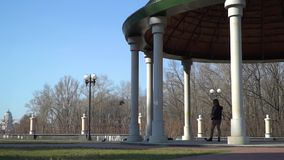 Young girl walking in park and feed pigeons. Young girl is standing under the dome and feeds wild pigeons. The girl spend her leisure time alone walking in the stock video footage