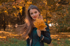 Young girl stands in the Park and holds autumn leaves in hand. Girl stands in the Park and holds autumn leaves in hand Stock Photos