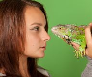 A young girl stares at iguana Royalty Free Stock Photography