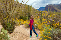 Young Girl Stopped On Hiking Trail. A young girl turns around to look back on an Arizona hiking trail in the middle of a blooming desert stock images
