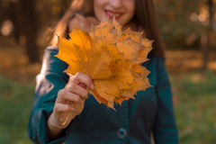 Young girl stretched forth a hand with autumn leaves close-up Stock Photos