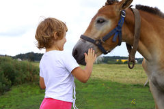 Young girl stroking horse. Young girl stroking a horse. Countryside holidays Stock Image