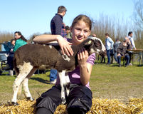 A young girl stroking a new born lamb Stock Images