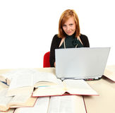 Young girl studying for exams. Royalty Free Stock Images