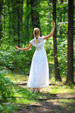 Young girl in a summer forest Royalty Free Stock Images