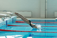 Young girl swimmer, that jumping and diving into indoor sport swimming pool. Royalty Free Stock Image