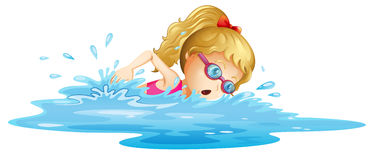 A young girl swimming. Illustration of a young girl swimming on a white background Stock Images