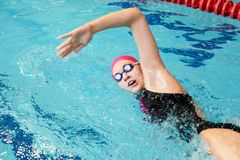 Young girl swims freestyle. In the pool Royalty Free Stock Photography