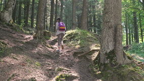 Young girl with tablet computer hiking in the forest stock video
