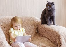 Young girl with tablet and grey cat royalty free stock photography