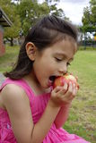 Young Girl Taking a Bite From Her Apple. A portrait of a young girl of Asian descent taking her first bite in to a large red and yellow apple Stock Photos