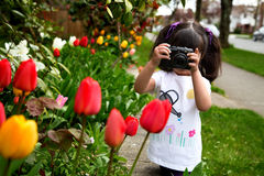 Young girl taking a picture of tulips. Young girl looking through viewfinder of her camera making a photo of spring flowers Stock Photo