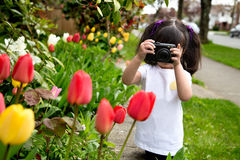 Young girl taking a picture of tulips. Young girl looking through viewfinder of her camera making a photo of spring flowers Stock Photos