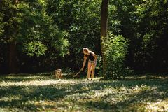 Young girl teasing her dog with a branch. In the park on a beautiful day royalty free stock photos