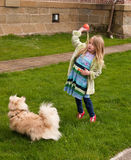 Young girl throwing a ball to a little dog.  Stock Photography
