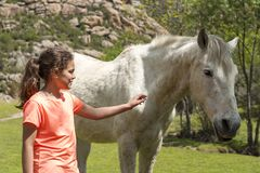 Young girl touching a wild horse royalty free stock image