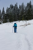 Young girl tourist with backpack hiking in the winter mountains. Royalty Free Stock Image