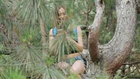 Young girl tourist in a pine forest stock video footage